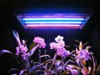 Что нужно учесть при установке LED-светильников Union