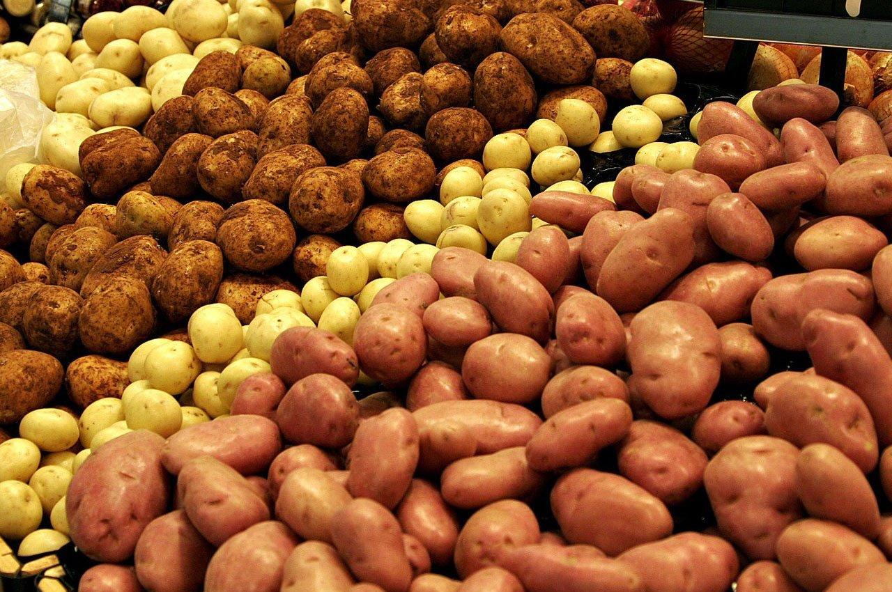 Увеличиваем урожайность картофеля с помощью удобрений