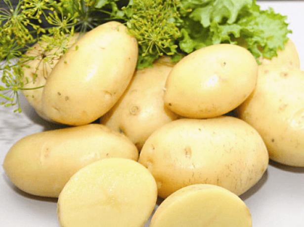 Элитный сорт картофеля Импала