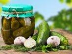 Лучшие сорта огурцов для консервирования, в том числе голландской селекции