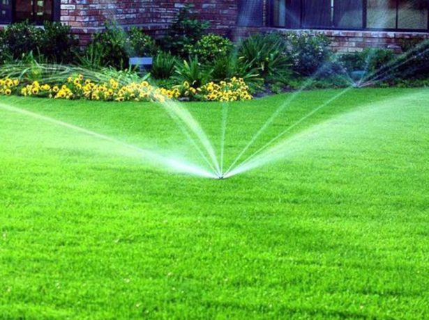 Автоматизированный полив газона