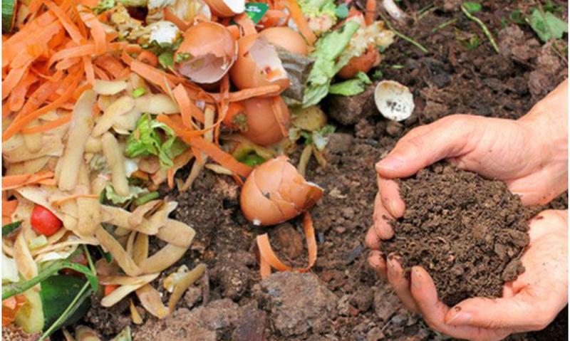 Компост своими руками: делаем яму и кучу