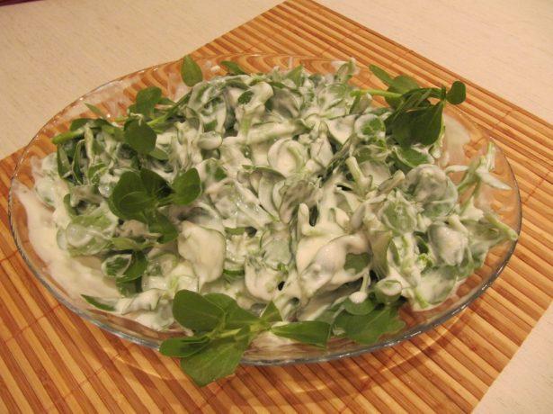 портулак в салате