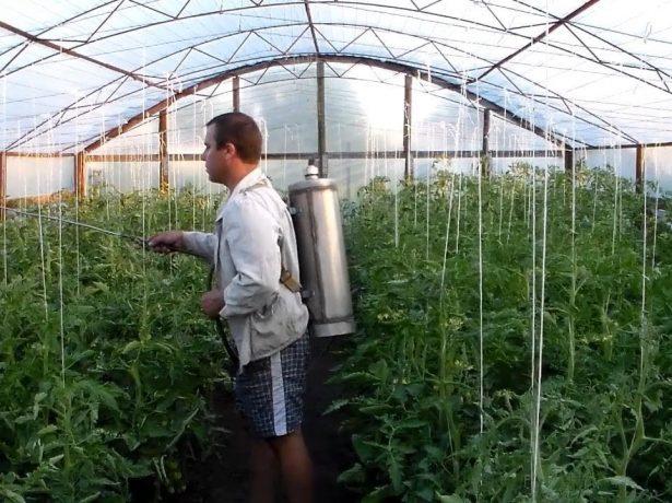 Обработка растений химикатами