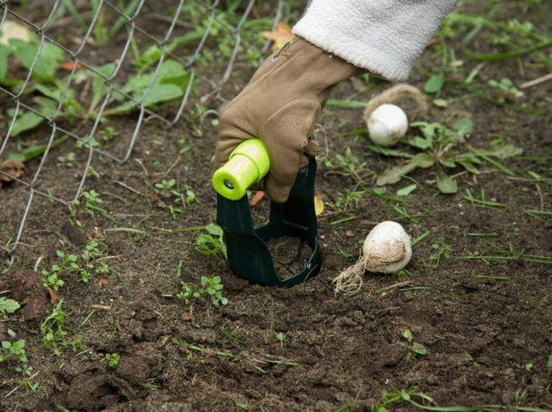 Приспособление для посадки луковичных