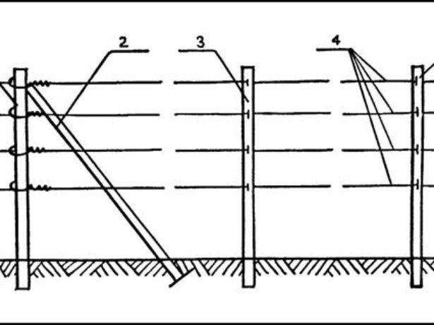 Схема одноплоскостной шпалеры для винограда