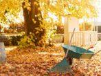 Что делать на даче в ноябре, чтобы успеть до морозов