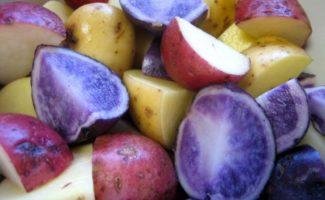 Картофель Салют — фейерверк вкуса