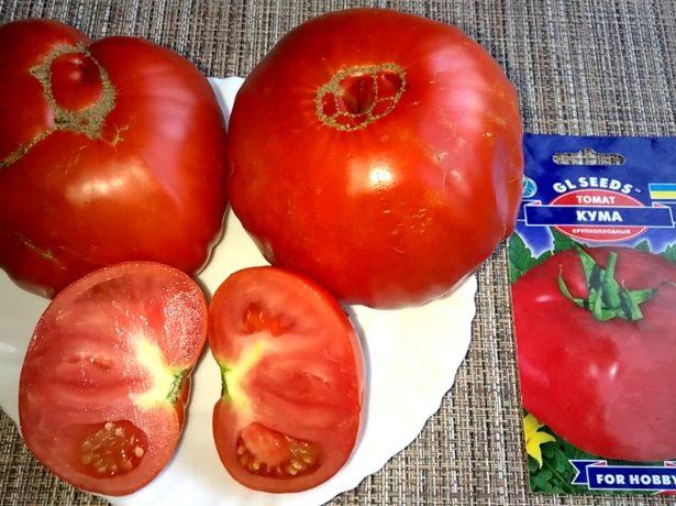 Новые сорта томатов на 2019 год рекомендации