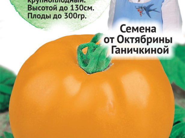 Томат Солнце Панчева