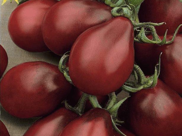 Пакет семян томата Груша чёрная