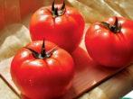Сорт томатов Виртуоз