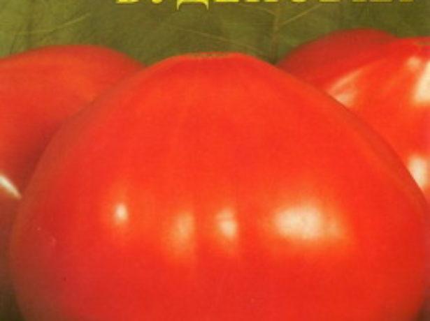 Семена томата Будёновка