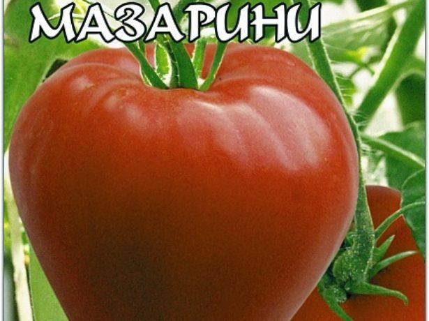 Семена томатов Мазарини (Биотехника)