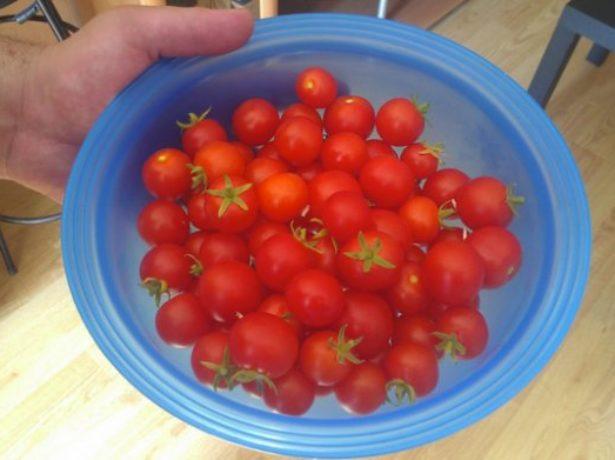 Спелые помидоры в ёмкости