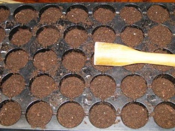 Кассеты с землёй для посадки семян