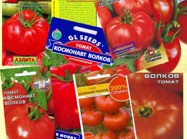 Некоторые из реализаторов семян томатов Космонавт Волков
