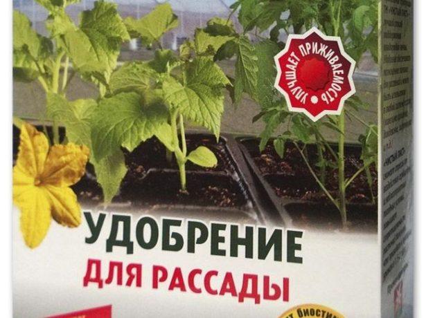 Удобрение для рассады
