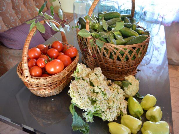 Овощи, выращенные на даче под Питером
