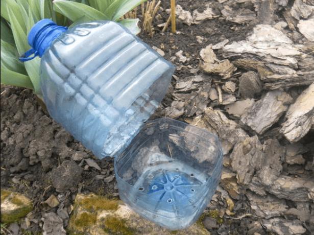 Тепличка из пластиковой бутылки