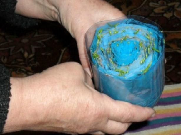 «Улитка» для рассады с туалетной бумагой в бутылке