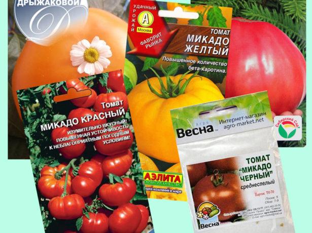 Разновидности томатов Микадо