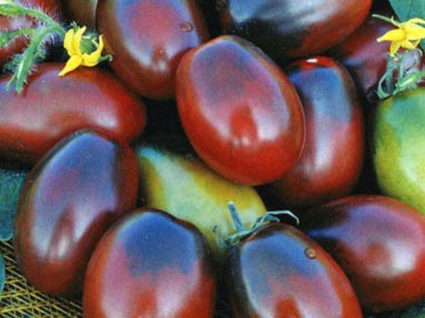 Плоды томата Чёрный мавр