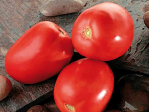 Плоды томата Диаболик