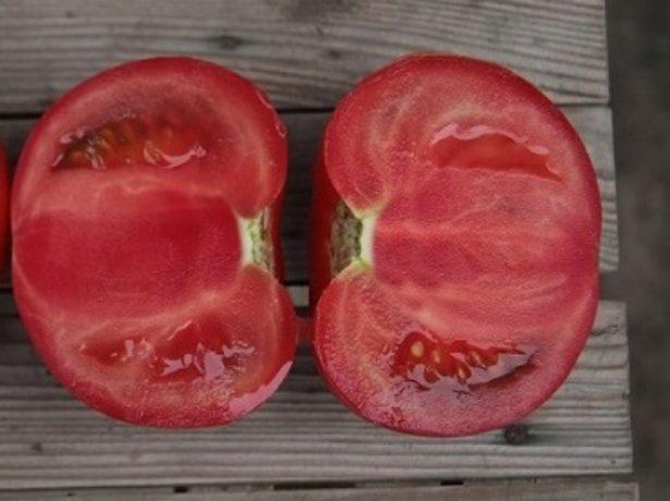 Разрезанный плод томата Кибо
