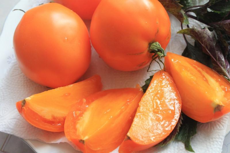 Томат Южный загар — оранжевый плод необычайного вкуса