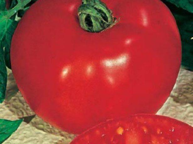 Семена томата Хлыновский