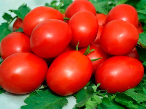 Урожайный и ранний томат Валентина
