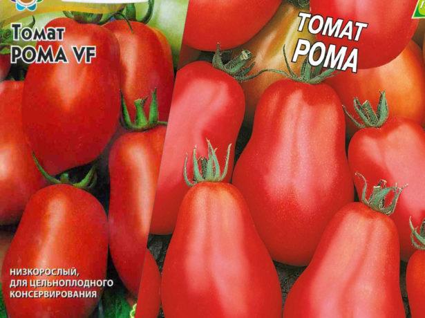Разновидности сорта Рома от наших производителей