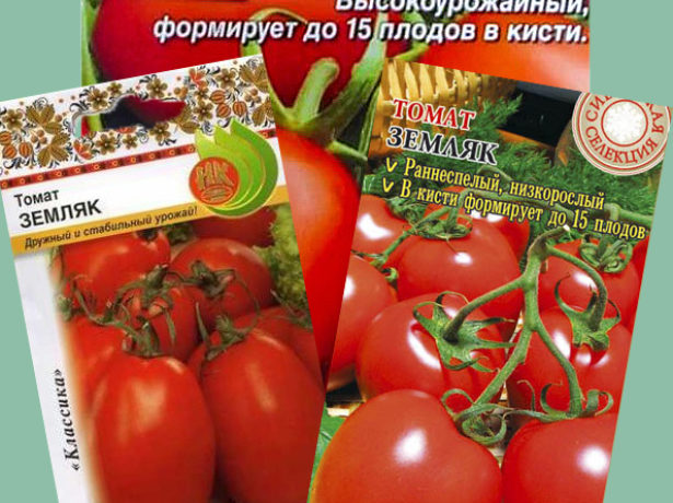 Семена томата Земляк