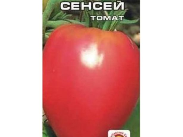 Семена томата Сенсей