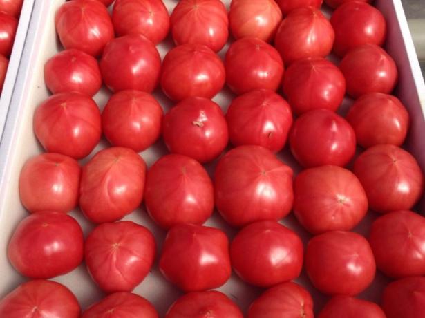 Пинк Парадайз томат