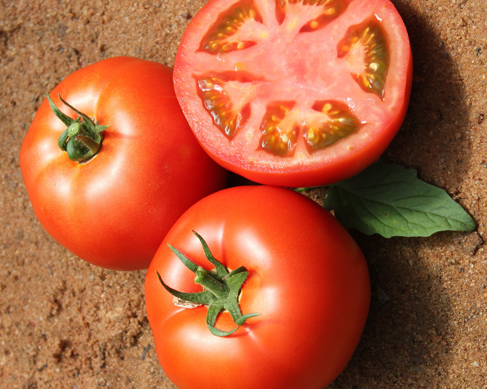 гамильтон картинки день томатов тех
