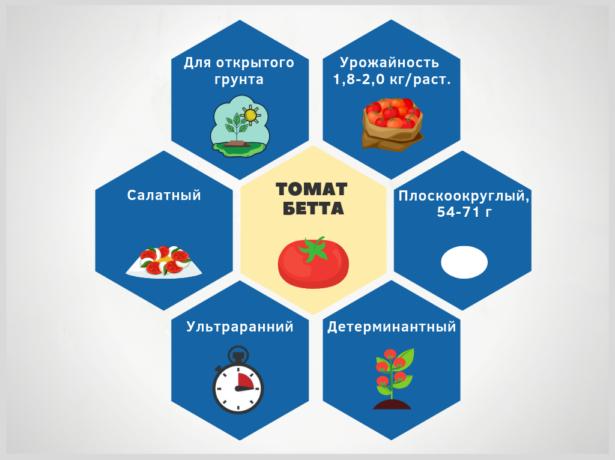 инфографика томат Бетта