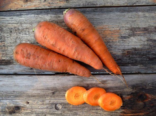 Крупноплодная морковь