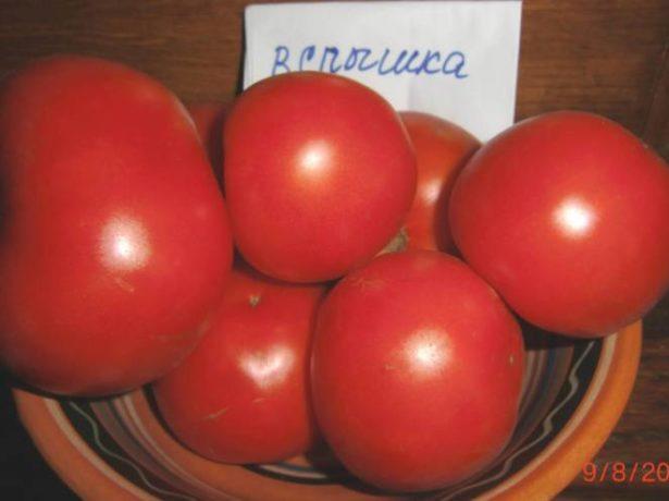 Плоды томата Вспышка