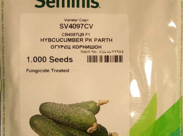Семена огурца СВ 4097 ЦВ