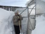 Чистим теплицу от снега — лучшие способы и народная смекалка