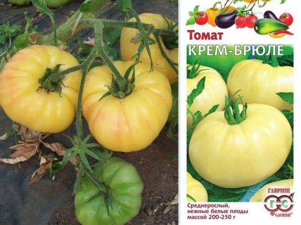 Семена и плоды томата Крем-брюле