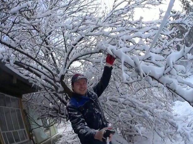 отряхивание снега