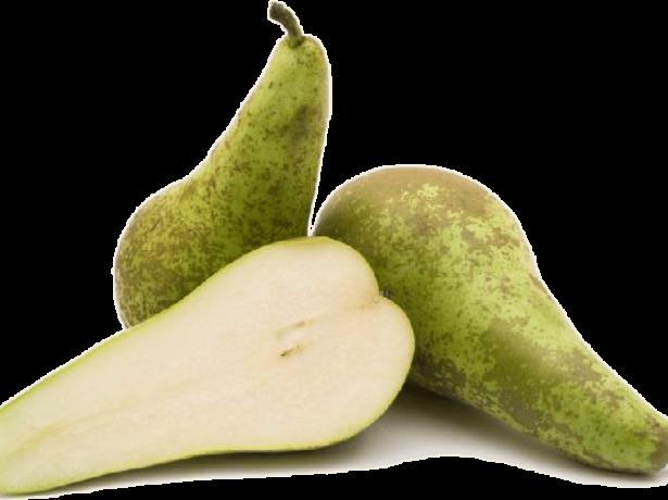 Плод груши Конференция в разрезе
