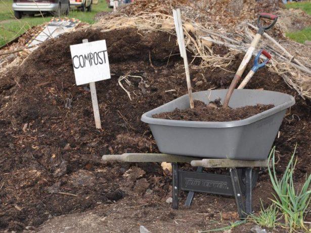 Органическое удобрение (компост)