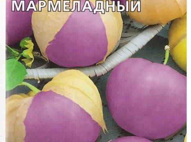 Физалис Мармеладный с фиолетовыми ягодами