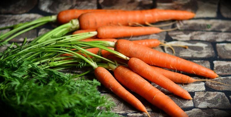 Сказ о сибирской морковке: подборка лучших сортов с описанием