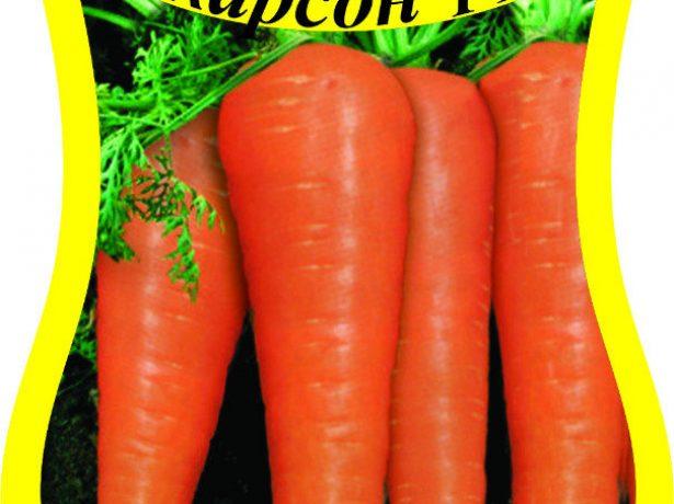Морковь сорта Карсон