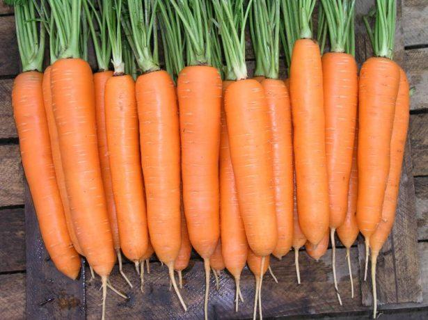 Морковь Элеганс